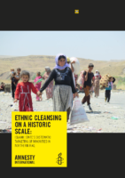 Iraq_ethnic_cleansing_final_formatted_amnesty